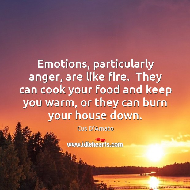 Emotions, particularly anger, are like fire.  They can cook your food and Cus D'Amato Picture Quote