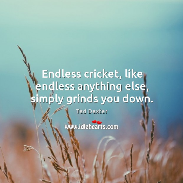 Endless cricket, like endless anything else, simply grinds you down. Image