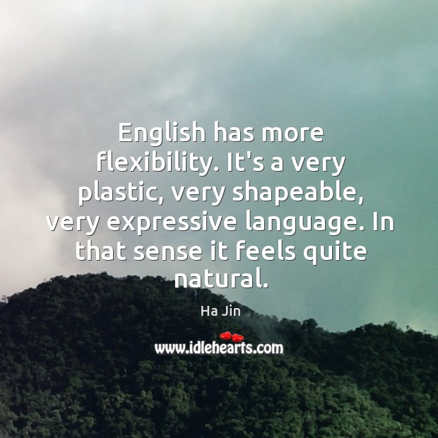 English has more flexibility. It's a very plastic, very shapeable, very expressive Image