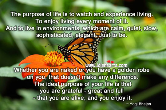 The purpose of life is to enjoy living every moment of it. Wisdom Quotes Image