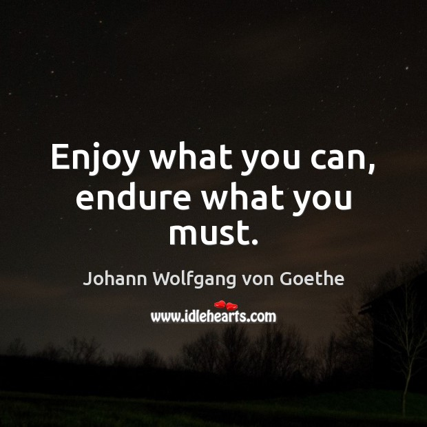 Enjoy what you can, endure what you must. Image