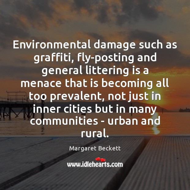 Environmental damage such as graffiti, fly-posting and general littering is a menace Image