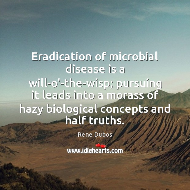 Eradication of microbial disease is a will-o'-the-wisp; pursuing it leads into a Rene Dubos Picture Quote