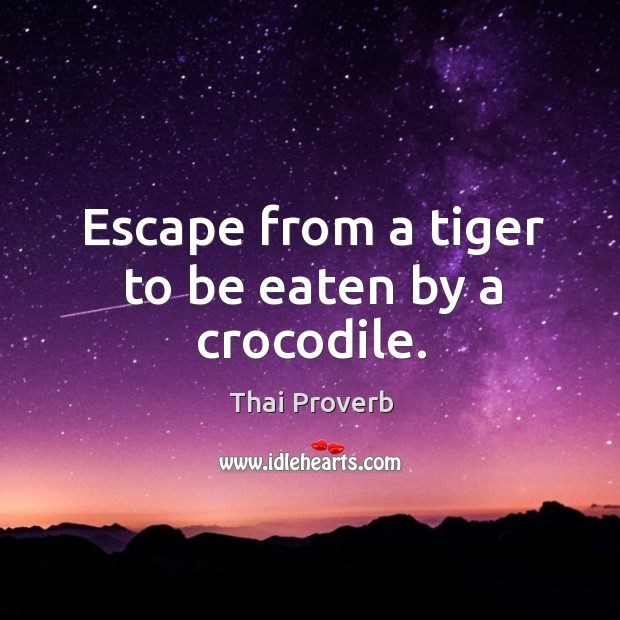 Escape from a tiger to be eaten by a crocodile. Thai Proverbs Image