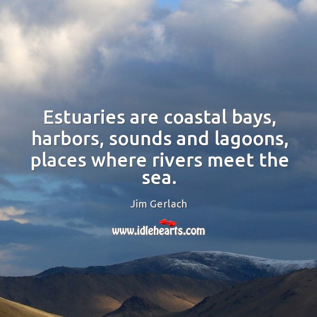 Estuaries are coastal bays, harbors, sounds and lagoons, places where rivers meet the sea. Image