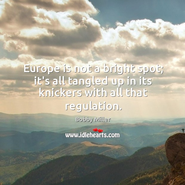 Image, Europe is not a bright spot; it's all tangled up in its knickers with all that regulation.