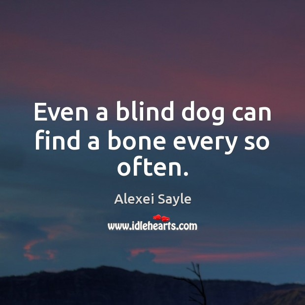 Image, Even a blind dog can find a bone every so often.