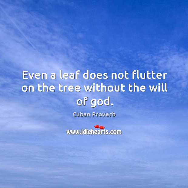 Even a leaf does not flutter on the tree without the will of God. Cuban Proverbs Image