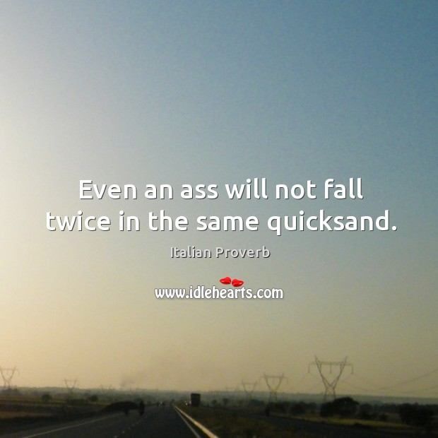 Image, Even an ass will not fall twice in the same quicksand.