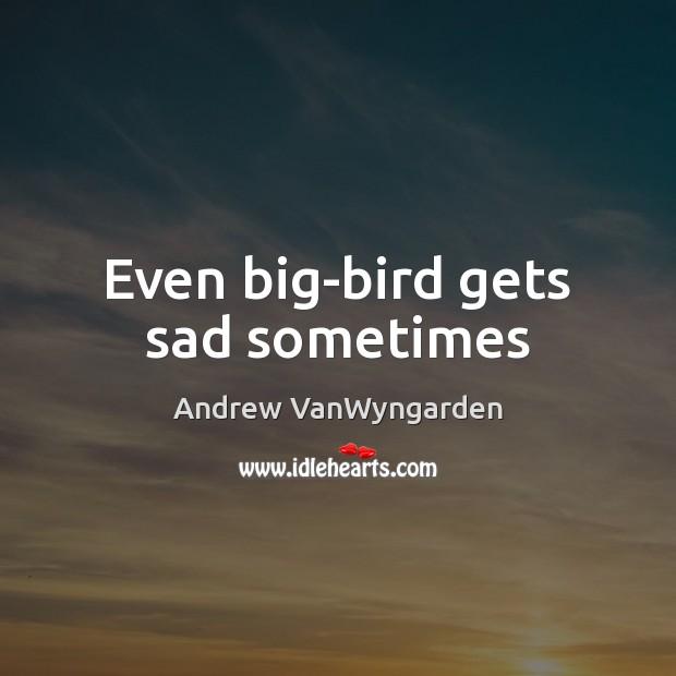 Even big-bird gets sad sometimes Image