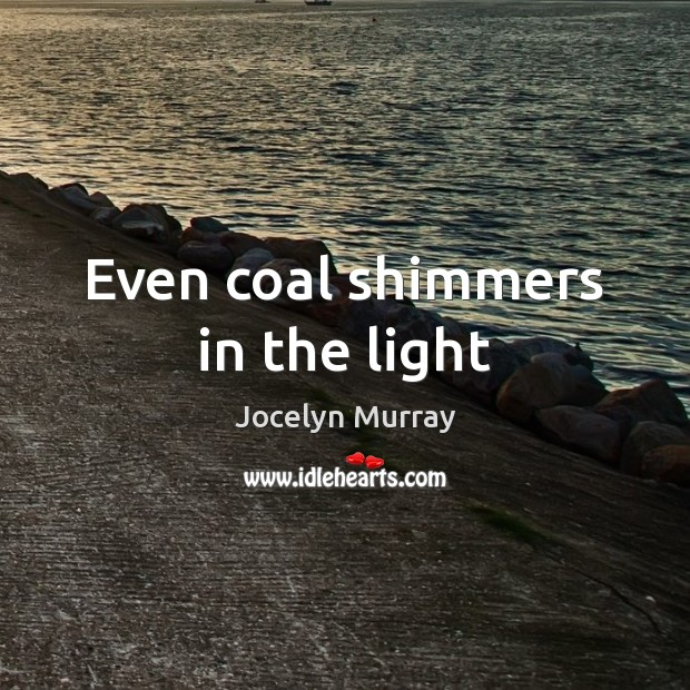 Even coal shimmers in the light Image