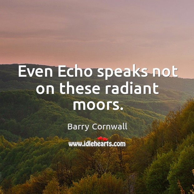 Even echo speaks not on these radiant moors. Image