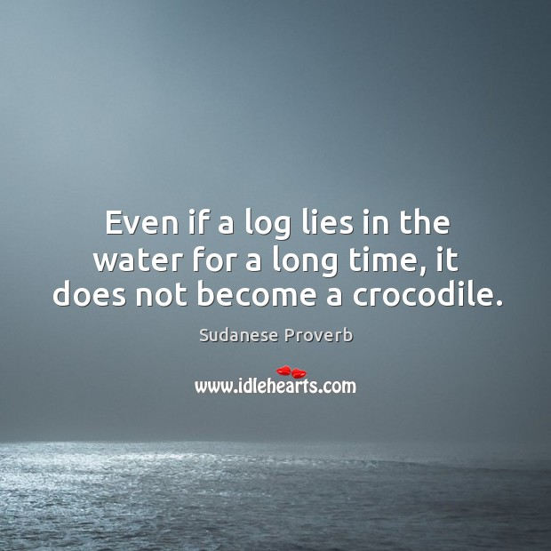 Even if a log lies in the water for a long time, it does not become a crocodile. Sudanese Proverbs Image