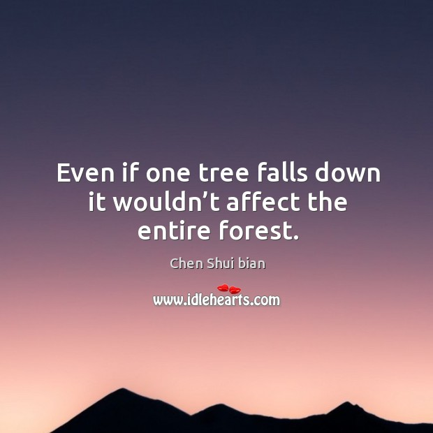 Even if one tree falls down it wouldn't affect the entire forest. Image