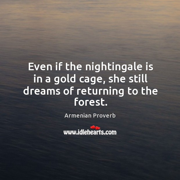 Even if the nightingale is in a gold cage Armenian Proverbs Image