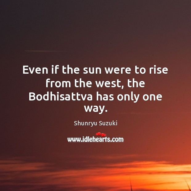 Even if the sun were to rise from the west, the Bodhisattva has only one way. Image