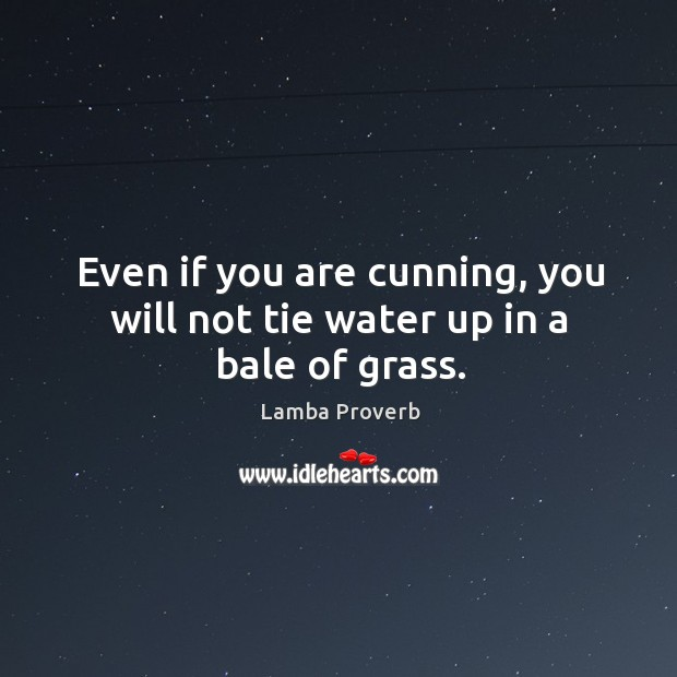 Even if you are cunning, you will not tie water up in a bale of grass. Lamba Proverbs Image