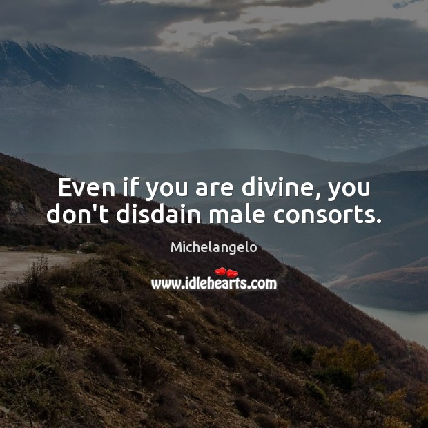Even if you are divine, you don't disdain male consorts. Michelangelo Picture Quote
