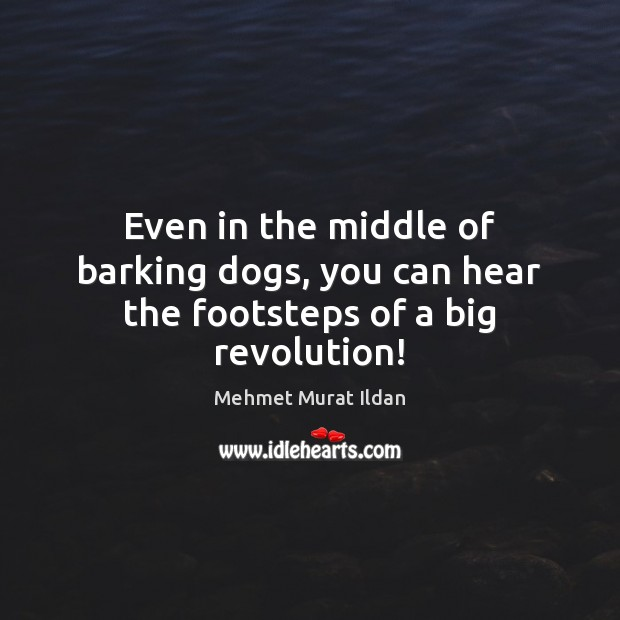 Image, Even in the middle of barking dogs, you can hear the footsteps of a big revolution!
