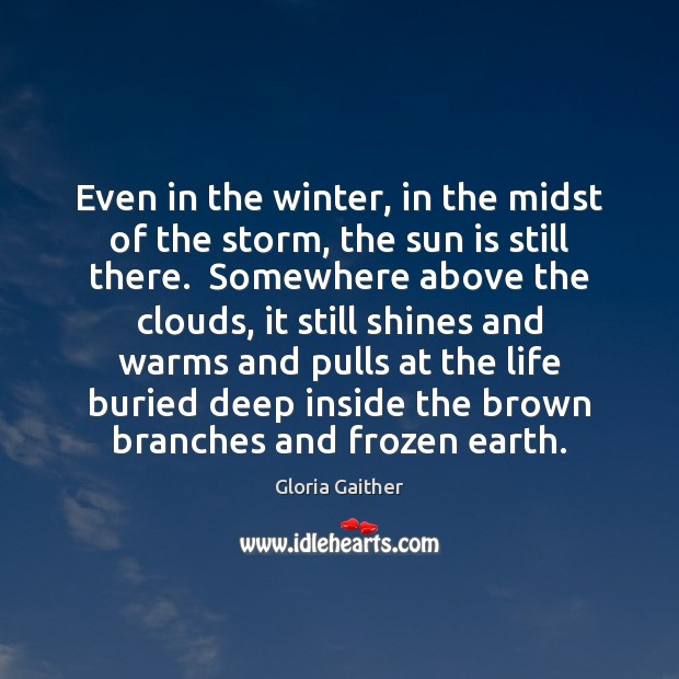 Image, Even in the winter, in the midst of the storm, the sun