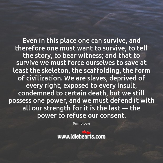 Even in this place one can survive, and therefore one must want Primo Levi Picture Quote