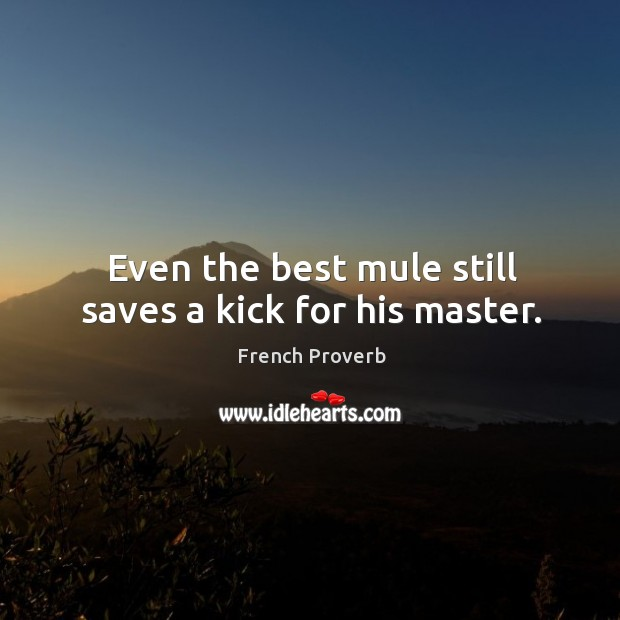 Image, Even the best mule still saves a kick for his master.