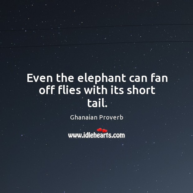 Even the elephant can fan off flies with its short tail. Ghanaian Proverbs Image