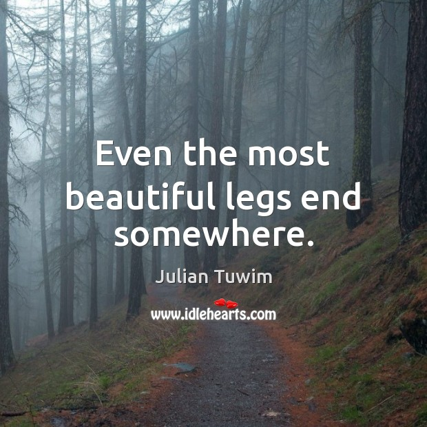 Even the most beautiful legs end somewhere. Image