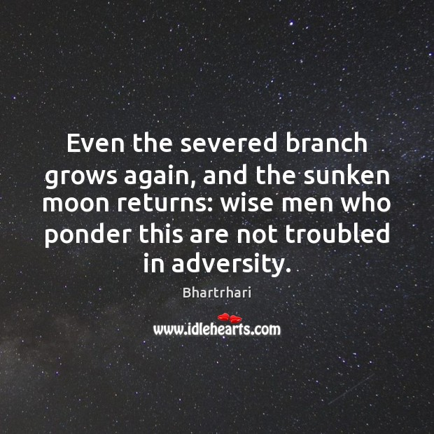 Image, Even the severed branch grows again, and the sunken moon returns: wise