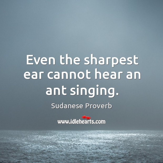 Even the sharpest ear cannot hear an ant singing. Sudanese Proverbs Image