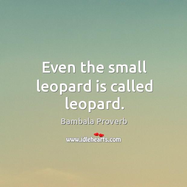 Bambala Proverbs
