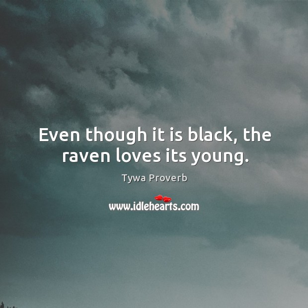 Even though it is black, the raven loves its young. Tywa Proverbs Image