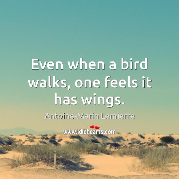 Even when a bird walks, one feels it has wings. Image