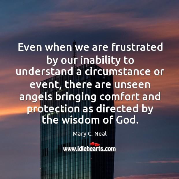 Mary C. Neal Picture Quote image saying: Even when we are frustrated by our inability to understand a circumstance