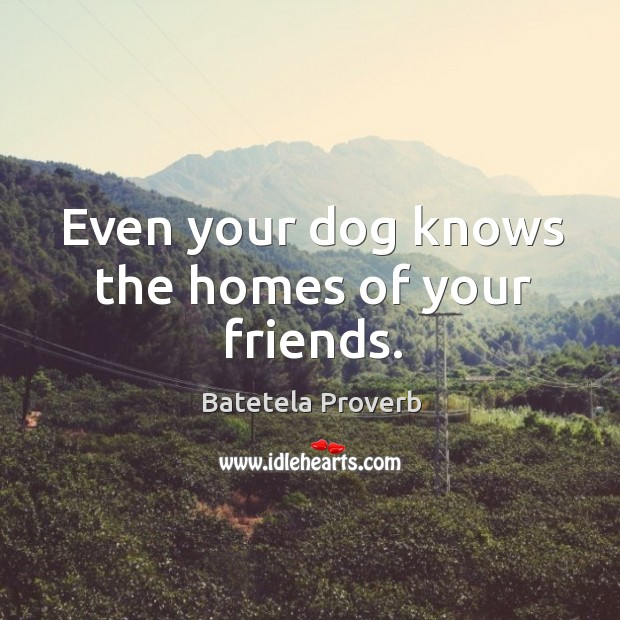 Even your dog knows the homes of your friends. Batetela Proverbs Image