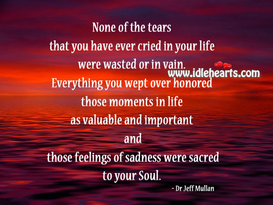 None of The Tears That You Have Ever Cried In Life Were Wasted.