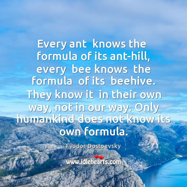 Every ant  knows the  formula of its ant-hill, every  bee knows  the Fyodor Dostoevsky Picture Quote