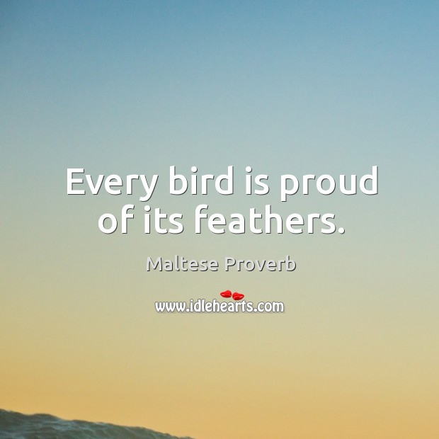 Every bird is proud of its feathers. Maltese Proverbs Image