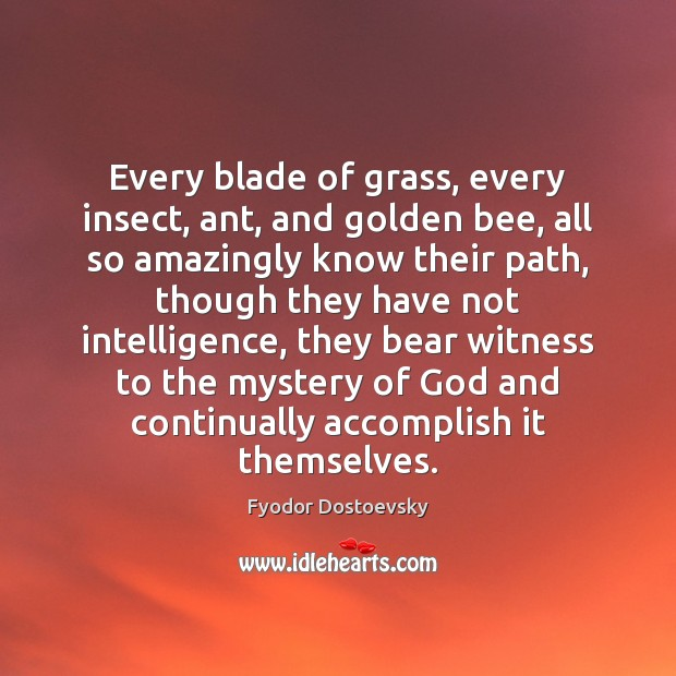 Every blade of grass, every insect, ant, and golden bee, all so Image