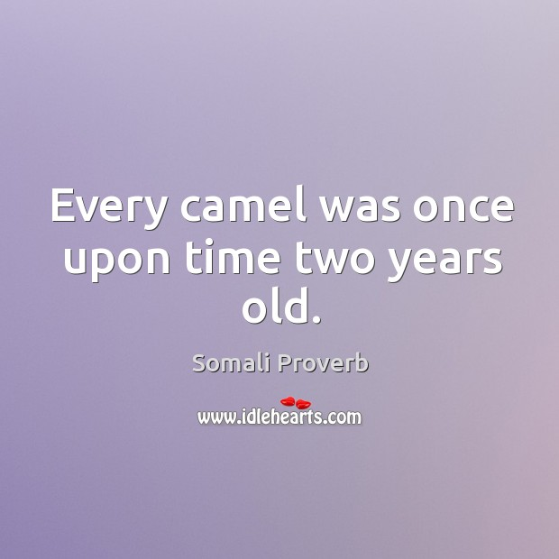Image, Every camel was once upon time two years old.