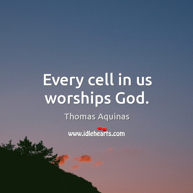 Every cell in us worships God. Image