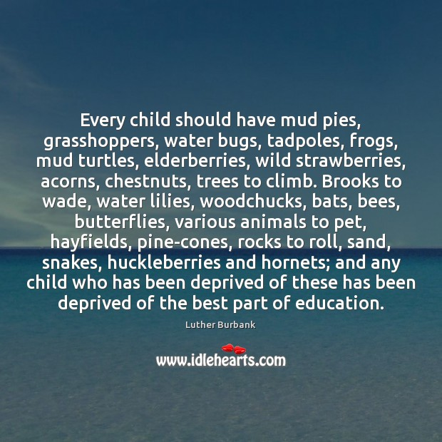 Every child should have mud pies, grasshoppers, water bugs, tadpoles, frogs, mud Image