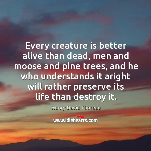 Every creature is better alive than dead, men and moose and pine trees Image