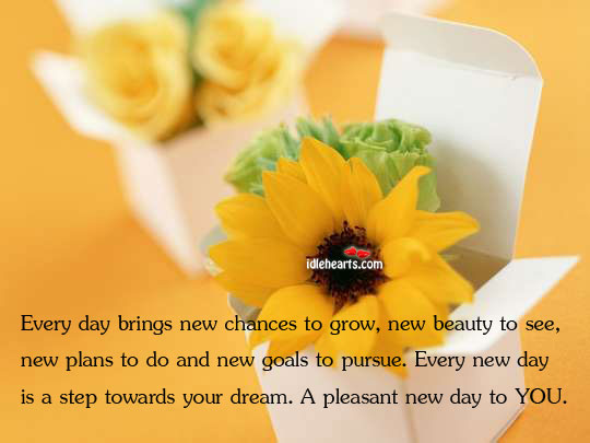 Every day brings new chances to grow, new beauty to see Image
