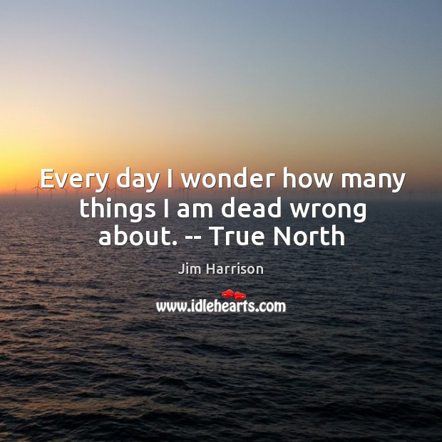 Image, Every day I wonder how many things I am dead wrong about. — True North