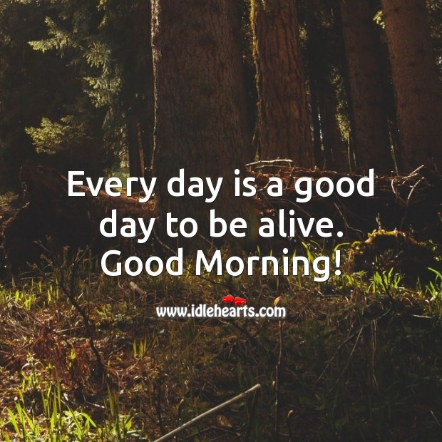 Every day is a good day to be alive. Image