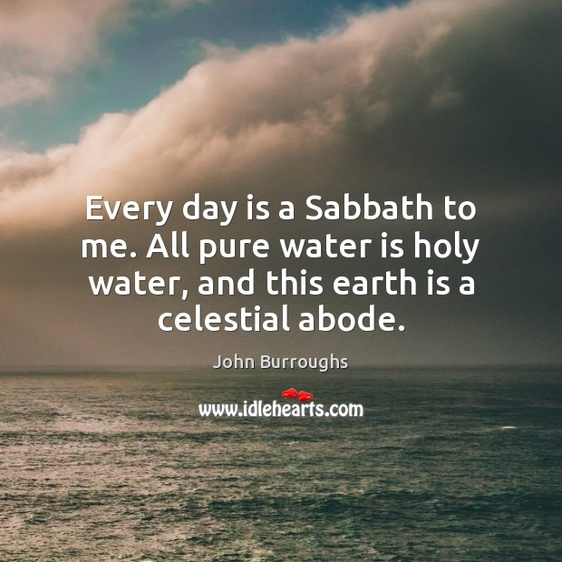 Every day is a Sabbath to me. All pure water is holy Image