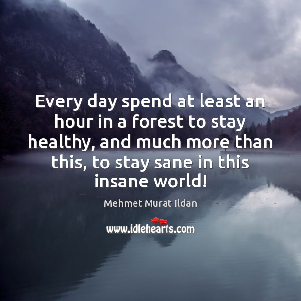 Image, Every day spend at least an hour in a forest to stay