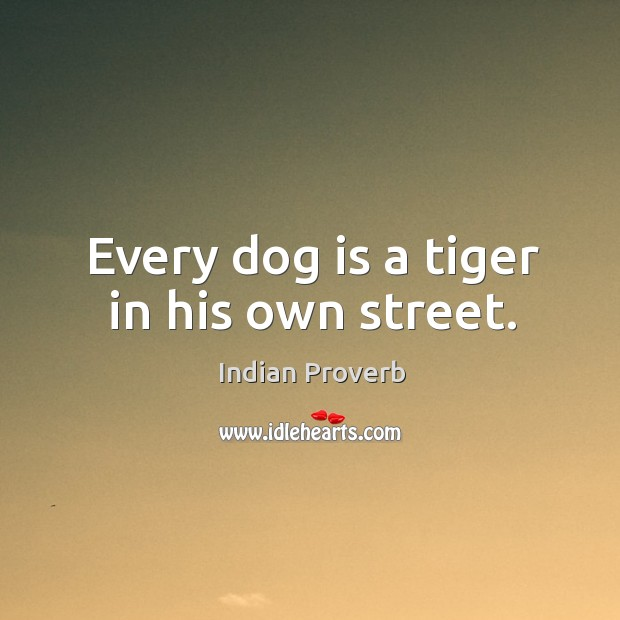 Image, Every dog is a tiger in his own street.