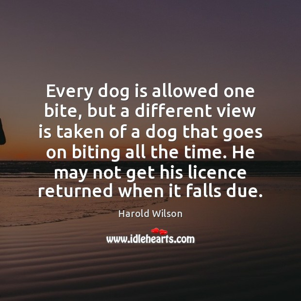 Image, Every dog is allowed one bite, but a different view is taken